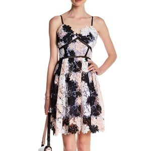 Romeo and Juliet Couture Empire Lace Floral Dress